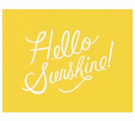 Goodbye Snow and Hello Sunshine